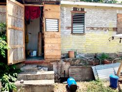 The house in Elleston Road in Kingston where Beverly Summerville, 60, and her son, Junior 'Little Pig' Byfield, were shot and killed on Saturday.