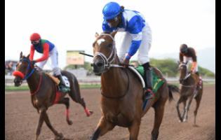 NIPSTER (centre), ridden by Robert Halledeen, winning the seventh race ahead of DOUBLE CROWN (left), ridden by Dane Dawkins, and EROY, ridden by Omar Walker, who placed third at Caymanas Park on July 5, 2020.
