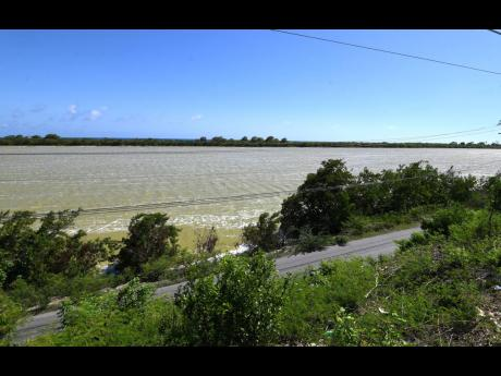 The strip of land between the Yallahs Pond and the Caribbean Sea is home to several residents.